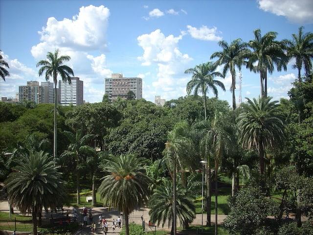 America Easy Sao Paulo 10