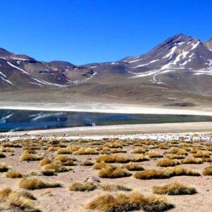 Atacama - Grupo ZA